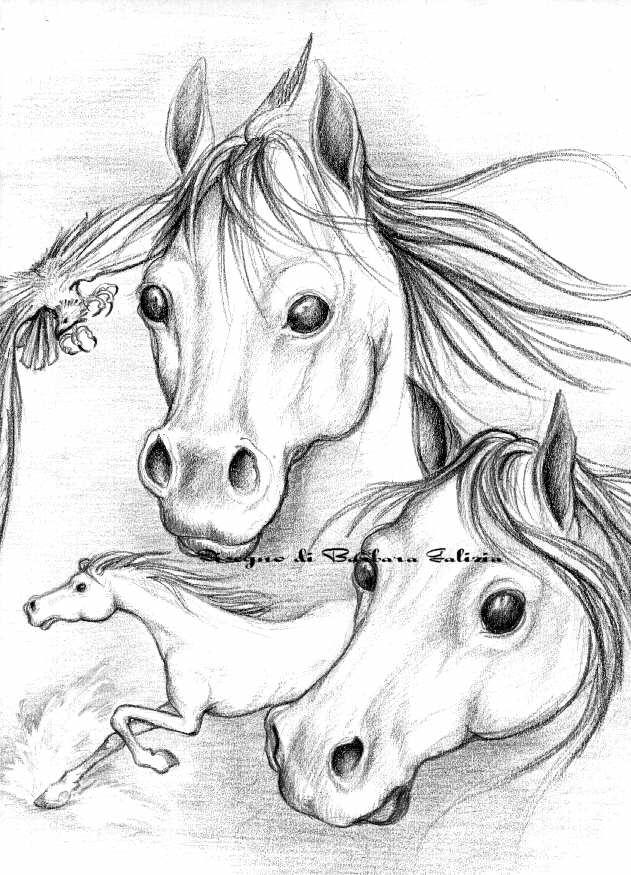 Barbara galizia fumetti fumetto caricature caricatura for Disegni di cavalli a matita